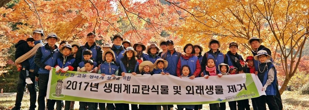 단풍이 아름다운 내장산국립공원에서 펼쳐진 가족봉사활동