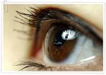 건강한 눈 관리 생활 속에서 실천하자 !