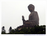 [홍콩/란타우섬] 포린사 (寶蓮寺) + 티엔탄(Tian Tan) 청동좌불