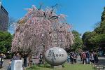 우에노온시공원(上野恩賜公園)