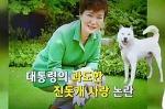 박근혜 진돗개 청와대에 버렸다. 박근혜의 진돗개 사랑도 가짜였다.