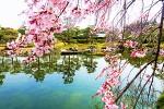 [워킹홀리데이] 일본 가족여행 (3) - 나고야 (名古屋)