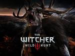 ウィッチャー3 ワイルドハント (The Witcher3 Wild Hunt) 壁紙 画像 (10)