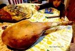 스페인 하몽(Jamón)이 국민 음식이 된 진짜 이유
