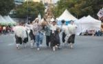 계룡군문화축제에서 독특하고 개성넘치는 축제를 확인하세요