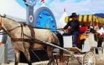 10월 경상도축제로 울진송이축제와 마산가고파국화축제, 거제섬꽃축제가 있다