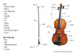 오케스트라 구성악기 비올라(Viola)
