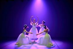 170402_발레라인즈 공연