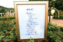 에버랜드 장미원에서 가을 문학 정원&윤동주의 시를 만나요^^