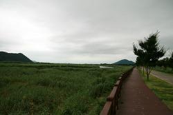 [순천] 순천만 자연생태공원