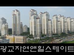 """저평가 되어있는 """"광교 자연앤힐스테이트"""" 아파트 단지내 상가"""