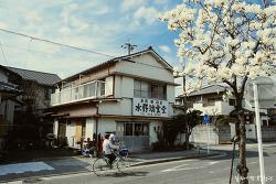 [일본] Nagoya ('17.3.24. - 3.26.)