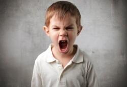 분노 조절장애를 예방하는 아이 밥상