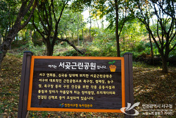 인천 가을데이트하기좋은 곳 '서곶근린공원의 가을풍경'