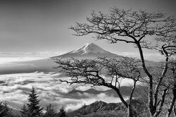 Photographer Captures the Mystifying Moods of Mount Fuji at Dawn 신비의 후지산 석양