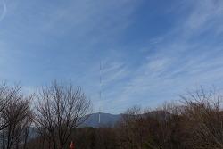 부산 화지산 치유의 숲길 걷기