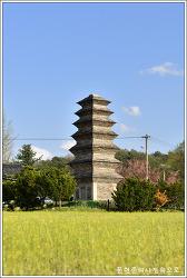 충북 제천 장락동 칠층모전석탑