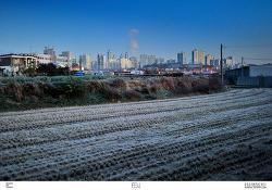 동탄신도시의 초겨울