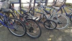 서울 자전거 대여 앱 라이클을 이용 벨로치 디스코를 대여하여 즐긴 하루