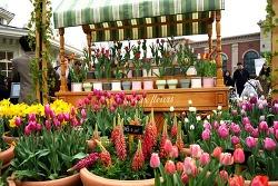 올 봄 주말 나들이? 에버랜드 튤립축제에서 즐겨보자!