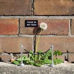 Clever Street Artist Transforms Ordinary Public Places Into Funny Installations 스트리트 아티스트, 평범한 길거리를 유머틱한 환경으로 변신시켜