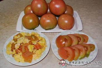 [코레일유통 친환경쇼핑몰]스토리웨이몰 강원도진품 소양강 찰토마토!