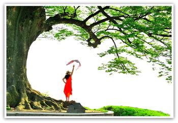 사랑나무 4ㅡ25