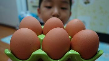 김주부의 계란 삶는 법! 삶은달걀, 물이 끓기 시작하면 바로 꺼라?