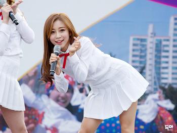 141101 광명 걷기대회 및 문화축제 - 틴트 by닥아