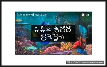 유튜브 동영상 링크걸기