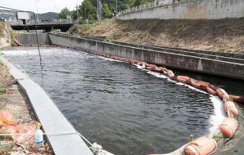 대구 수돗물 발암물질 부산 더 심하다??