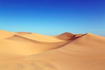 인생이라는 사막을 즐겁게 건너는 법