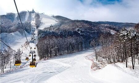 국내 스키여행 추천! 평창 휘닉스파크로 떠나는 올인원 겨울스포츠 투어