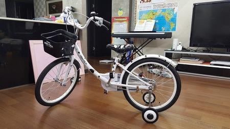 아들 자전거 타기