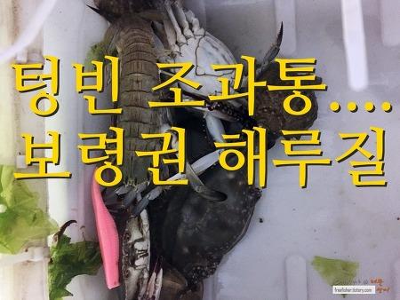 텅빈 조과통 - 보령권 해루질 (2017.5.24~05.26)