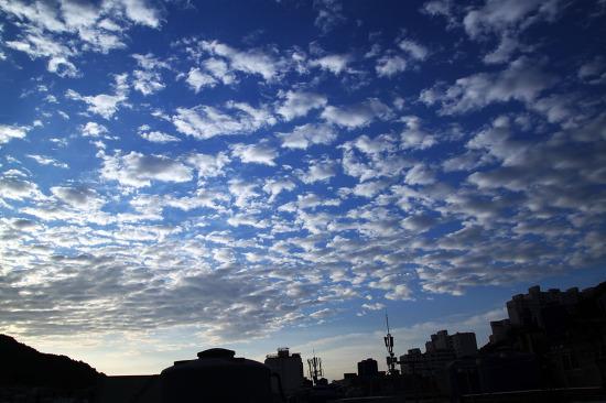 비온 다음날의 하늘.