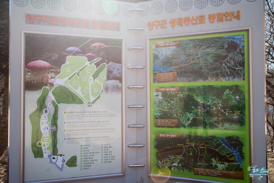 2016.1.25 양구자연생태공원