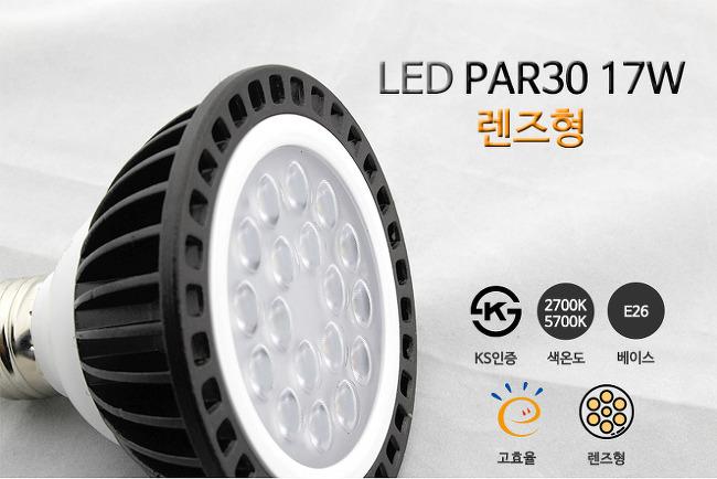 인테리어 LED전구 PAR30 17W E26