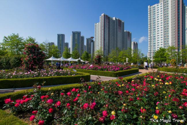 경남 창원시 성산구 장미공원