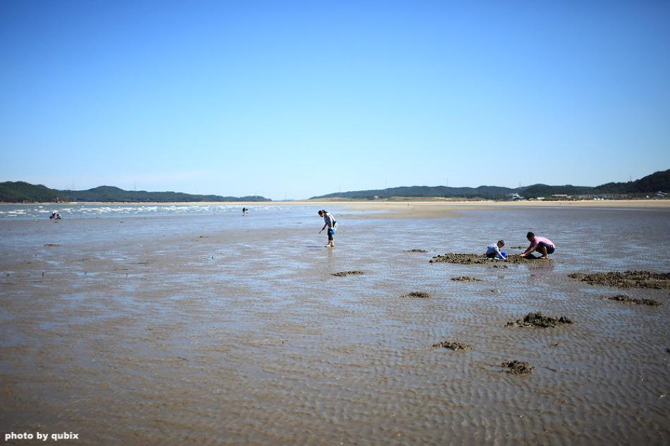 국내 최대의 모래언덕, 신두리 해안사구 | 태안 가볼만한곳