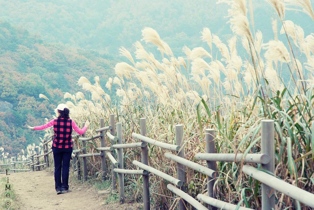 가을등산 (이정빈)