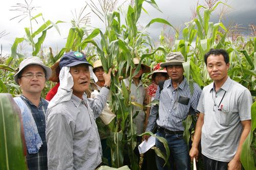 미얀마 Aung Ban 시험장 방문