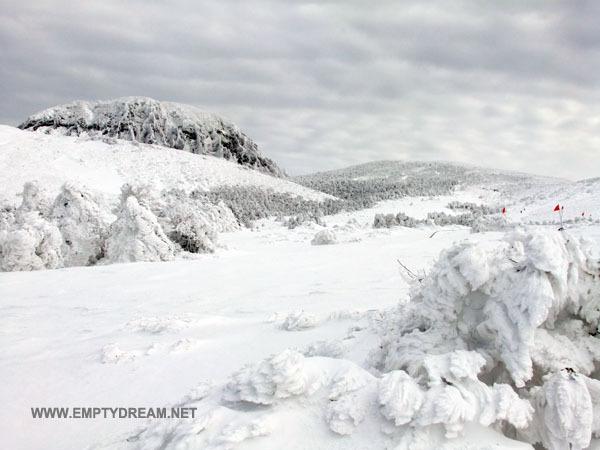 눈꽃 내린 겨울철 한라산, 어리목 영실 코스 산행 - 3 윗세오름 대피소