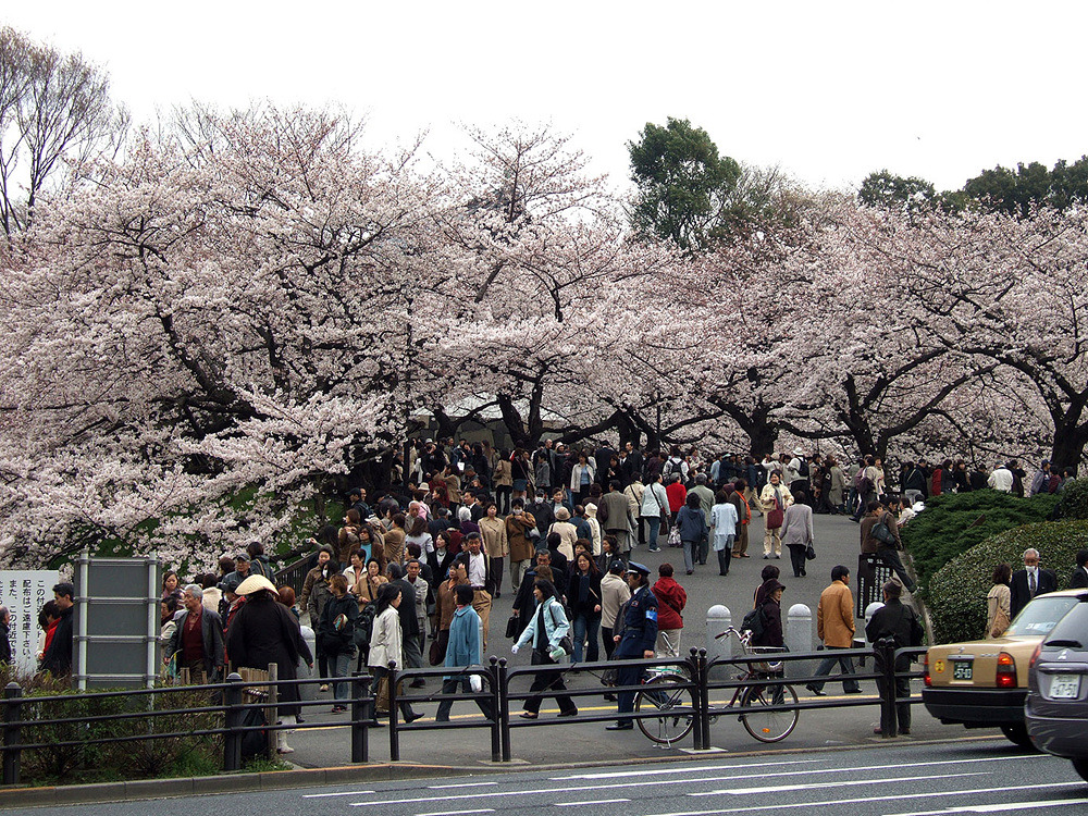 일본여행 - 그 다음 다음의 이야기 : 224BE84A513CBA8B05C50B