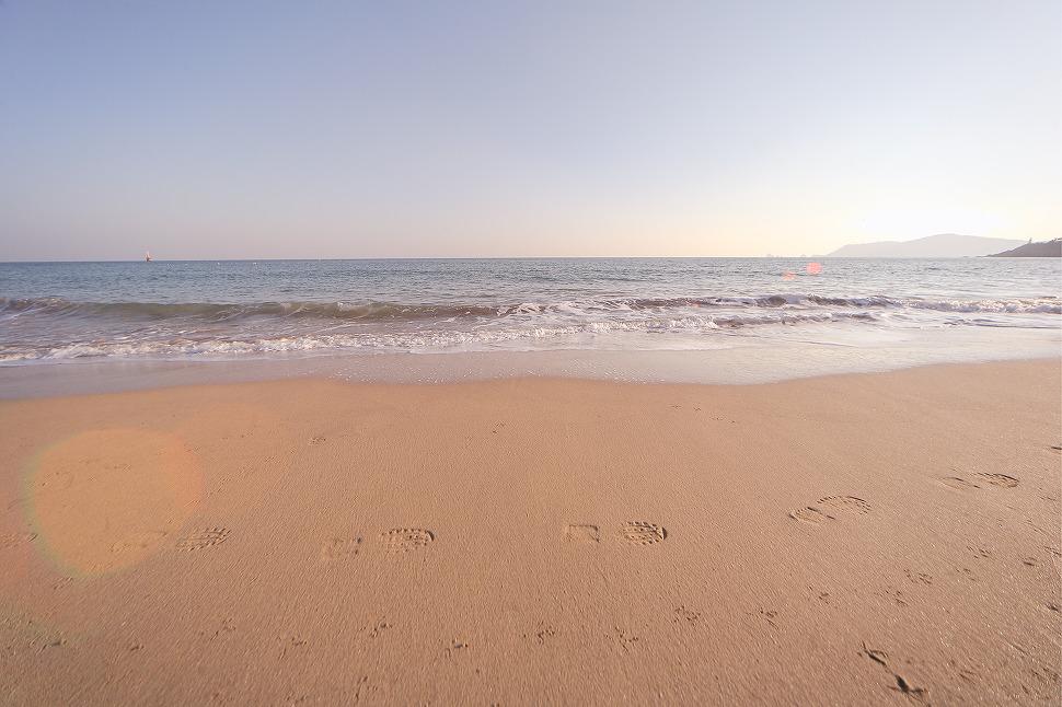 모래사장에 새가 지나간 발자국과 나란히 사람이 지나간 발자국이 새겨져있다.