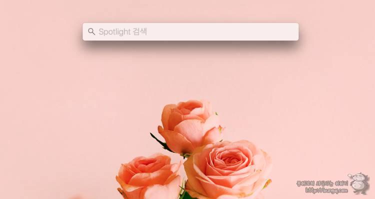 macOS 알아두면 편리해지는 꿀팁 5가지!