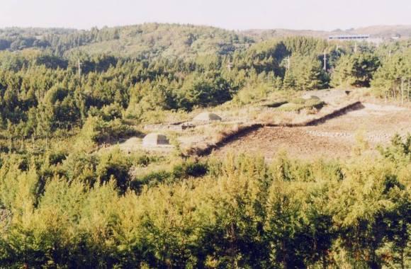 하원동탐라왕자묘