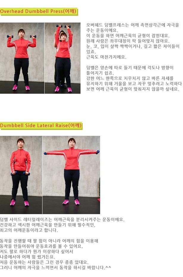[다이어트 정보] 2014 살빼는 고의 방법
