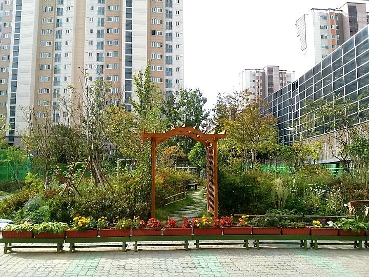 서울은빛초등학교 학교숲 야외숲