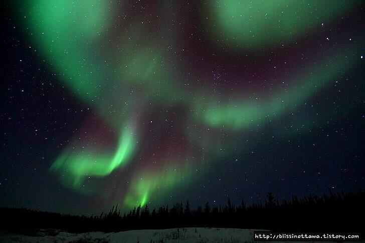 캐나다 옐로 나이프 오로라입니다
